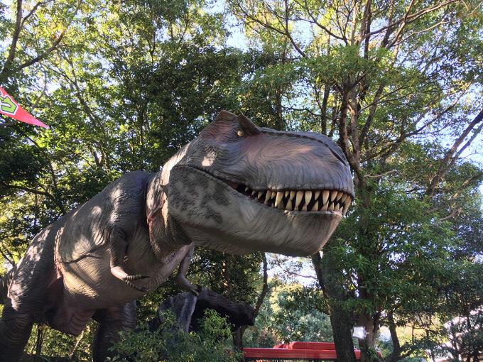 恐竜の写真
