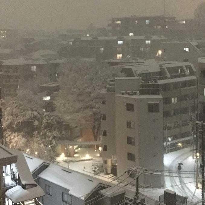 新宿の雪景色