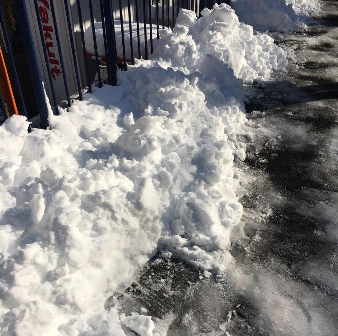 翌日の雪景色