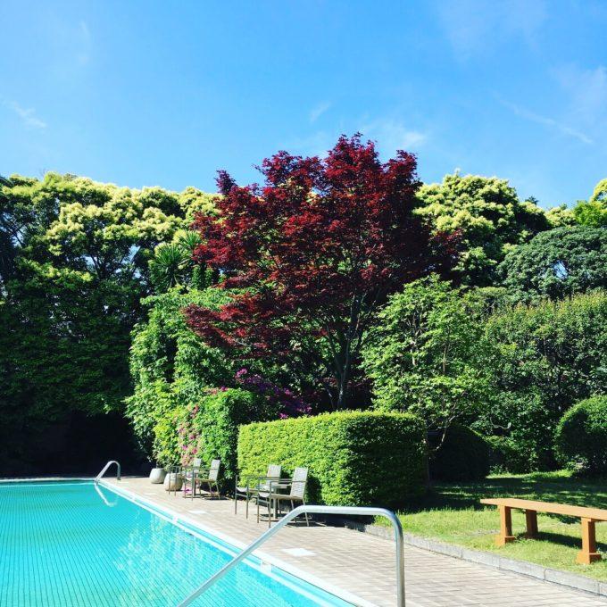 お庭のプール