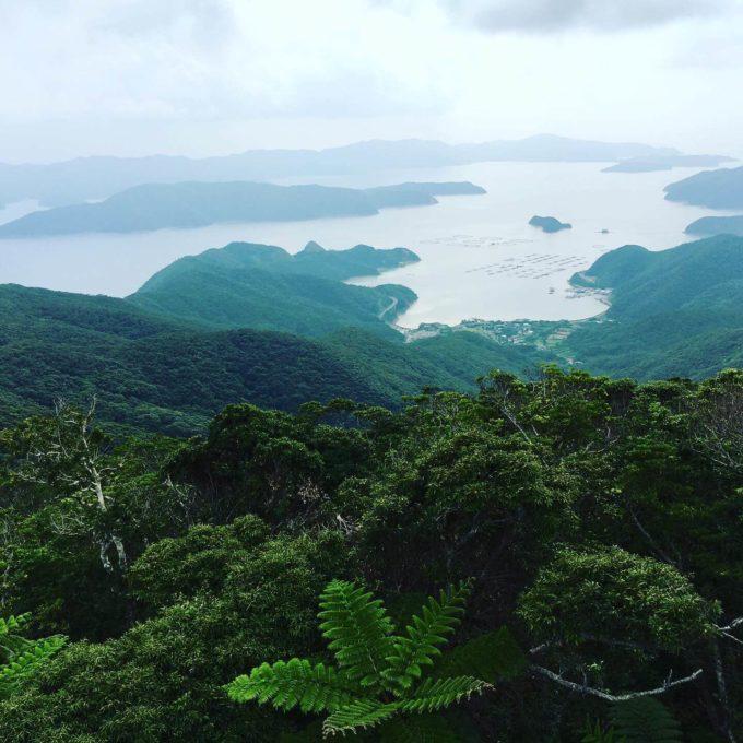奄美大島高知山展望台