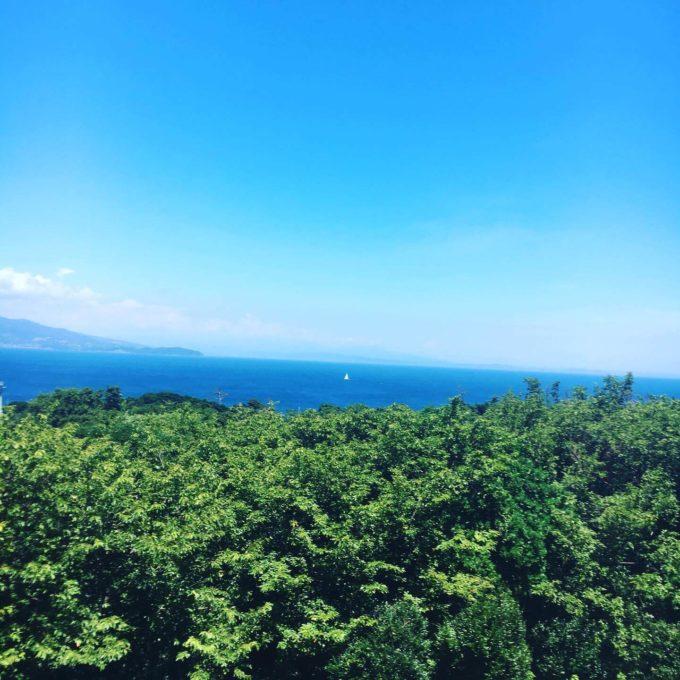 PICA初島サルトビ