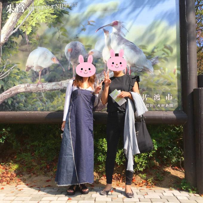 佐渡 トキの森公園